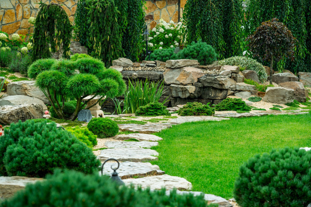landscaped backyard