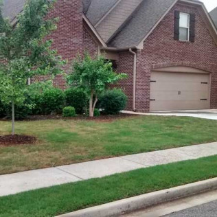 residential landscaped yard